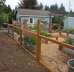 This is exactly how I want the fence around the veggie garden please ❤️❤️❤️ keep the dogs out and let the sun in and it's beautiful!