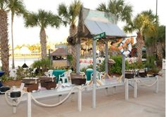 Key west theme buffets from Max King Events. Shop Lowes, Steel Drum, Plant Design, Buffets, Key West, Design Your Own, Breeze, Events, Patio