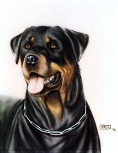Gos (aerografia sobre tela) Perro (aerografía sobre tela) Dog (airbrushing on textile)