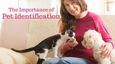 If you're an animal lover, you probably have a pet or a few pets at home. It is very important for your pet to have some form of identification. Whether it be a microchip, a license (these tags are… Your Pet, Pets, Blog, Animals, Animales, Animaux, Blogging, Animal, Animais