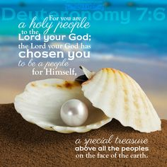 Image result for You are chosen by God