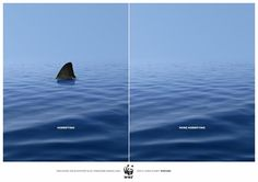 WWF: Shark | Ads of the World™