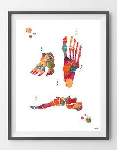 Voet botten aquarel print voet anatomie orthopedische