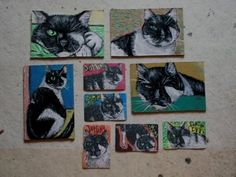 Miniature cat- paintings & magnetic pix for a cat rescue team (portraits of Domino the half-eyed cat!), made by me.