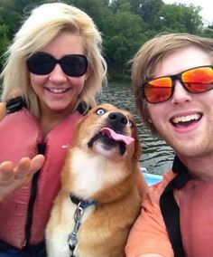 25 dog photobombs  LOL  #dogs #puppies #animals #pets #cute #funny