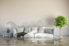 Water Damage provides water damage restoration services in Las Olas and Fort Lauderdale area. They also provide mold damage and roof tarp installation in South Florida. Call now for water restoration services in Broward County. Flood Risk, Flood Damage, Flood Restoration, Restoration Services, Water Damage Repair, Smoke Damage, Water Flood, Flood Insurance, Flood Zone