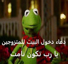 DesertRose,;,hehehehe,;, Funny Photo Memes, Funny Picture Jokes, Funny Photos, Funny Jokes, Funny Stuff, Arabic Memes, Arabic Funny, Arabic Quotes, Fall Tv Shows