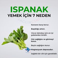 Learn Turkish Language, Naturopathy, Healthy Diet Recipes, Herbs, Learning, Food, Diet Recipes, Studying, Essen