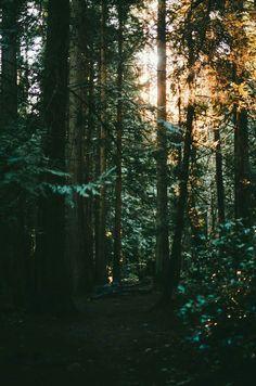 Estar perdido às vezes é melhor que se encontrar