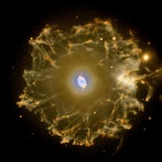 The Cat's Eye Nebula imaged with the Nordic Optical Telescope. Credit:Nordic Optical Telescope and Romano Corradi (Isaac Newton Group of Telescopes, Spain)