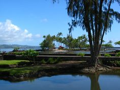 Queen Liliuokalani Gardens, Hilo Hawaii. where we wed