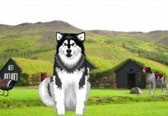 I will make a video of an animated dog or cat advertising your product or website | GigsMania