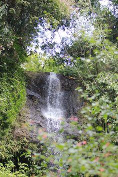 Waterfall Krecek Ndenu - Madiun, East Java Java, Niagara Falls, Waterfall, Beautiful Places, To Go, Heaven, City, Nature, Outdoor