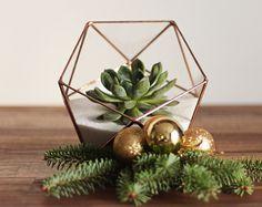 Birthday Pressie?, - Geometric Glass Terrarium / Christmas Table Centerpiece / by Waen
