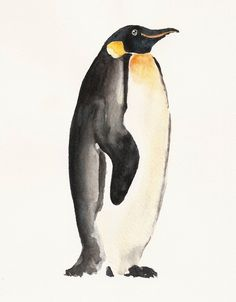 PENGUIN by DIMDI Original watercolor painting 8X10inch