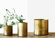 Gold containers for your little green plants || via clipandpin on Pinterest
