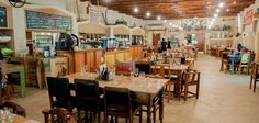 Family Fun & Furry Friends - Family Day in the Winelands Tasting Room, Wine Tasting, Family Day, Friends Family, Jungle Gym, Family Travel, Tours, Cape Town, Gallery