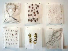 ann marie kennedy. paper and place papermaking workshop. women's studio workshop. july 14-18, 2014