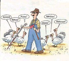 (Funny Jokes) 30 funny thanksgiving jokes for a good laugh Funny Thanksgiving Pictures, Thanksgiving Cartoon, Thanksgiving Wallpaper, Thanksgiving Turkey, Canadian Thanksgiving, Thanksgiving Wishes, Thanksgiving Scriptures, Thanksgiving Graphics, Thanksgiving Prayer