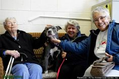 """Nuns adopt unwanted Pit Bull: West Artope, executive director at Hi Tor, told The Huffington Post that he was surprised that the nuns -- all over 70 years old -- weren't deterred by the thought of owning a pit bull.  """"Most people have a pretty bad understanding of pits,"""" Artope told HuffPost. """"But Remy was sensitive to the sisters, especially to Sister Virginia, who walks with a cane. She kept up with her and was so attentive."""""""