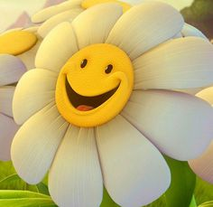 Cartoon Smile Faces | It is a very cute smiley face of sun flower . In the morning, it smile ...