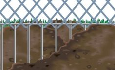 Dig Defence perfect for the tortoises outside habitat!