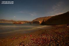 Reserva de San Fernando    http://www.culturamas.es/ocio/2012/04/30/reserva-de-san-fernando-oasis-de-vida-salvaje-entre-la-cordillera-y-el-mar/