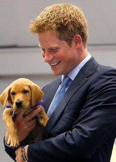 Prince Harry with adorable animals - Elle Canada