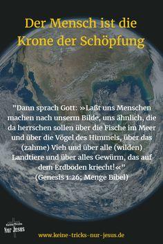 Gott hat den Menschen nach seinem Ebenbild erschaffen (Genesis 1:26; Genesis 2:7). Nur der Mensch, kein Baum, kein Strauch, kein Tier ist nach Gottes Ebenbild erschaffen.