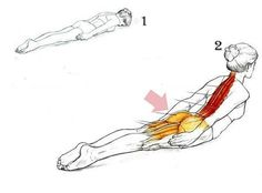 The Best Exercise For Maintaining A Proper Posture Getting Rid Of Back Pain - Health Remedies Yoga Fitness, Fitness Diet, Fitness Motivation, Health Fitness, Female Fitness, Pilates, Excercise, Back Pain, Yoga Poses