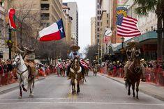 Viaje A Texas, Houston Livestock Show, Houston Rodeo, Showing Livestock, Street View, Google Search