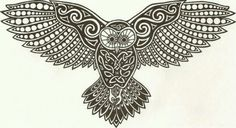 Owl with celtic design