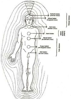 Chi, Prana, the Human Energy Field, and the Universal Energy Field Healing School, Emotional Vampire, Buddhist Philosophy, Body Anatomy, Information Graphics, Qigong, Body And Soul, Chakra Healing, Archetypes