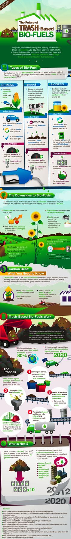 Trash based biofuels infographics! EcoPush (Gibraltar) for Sustainable, Socially Responsible Markets as well as Clean Energy, Timber, Forestry and Biofuel Bonds - http://ecopush.com/biofuels