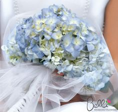 Google Image Result for http://www.bellaweddingflowers.com/media/catalog/product/cache/1/image/62defc7f46f3fbfc8afcd112227d1181/h/y/hydrangeas-blue-bridebouquet_1_3.png