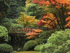Moon Bridge in Autumn: Portland Japanese Garden, Portland, Oregon, USA Fotoprint