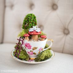 Make a Fairy Garden in a thrifted Tea Cup