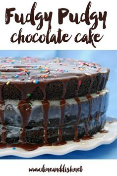 Fudgy Pudgy Chocolate Cake is a rich and delicious way to cure your chocolate fix! This cake is a must try for chocolate lovers! Layer Cake Recipes, Best Dessert Recipes, Fun Desserts, Tasty Chocolate Cake, Chocolate Treats, Chocolate Lovers, My Dessert, Eat Dessert First, Vanilla Mug Cakes