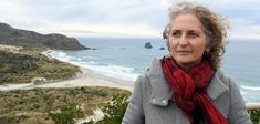 Seasonal beach closures need to be considered to reduce the detrimental impacts of visitors on wildlife, University of Otago zoologists say. The call follows the release of their research showing the closing of a Dunedin beach during breeding season was beneficial for yellow-eyed penguin (hoiho) chicks' survival. Conservation, Penguin, Wildlife, Survival, University, Birds, Closure, Seasons, Animal