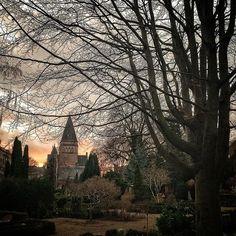 Tur på kirkegård med Myrkur i ørene og sindet. Forsøg på at fange min oplevelse. #holmenskirkegård #østerbro #københavnsældsteaktivekirkegård #myrkur #esajaskirke www.østerbrobyvandring.dk