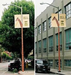 how to promote the zoo #guerillamarketing