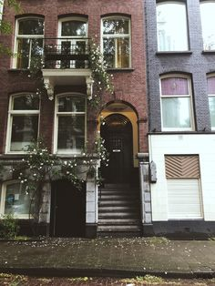 Travel Guide // Amsterdam Netherlands