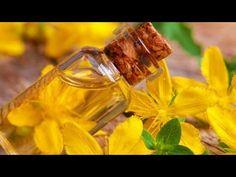 (2) 🍀 Pojarinta (sunatoarea) planta fericirii, care lecuieste 99 de boli | Eu stiu TV - YouTube Youtube, Food, Diet, Plants, Eten, Meals