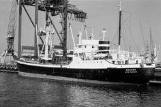Eind 70-jaren in de haven van Rotterdam  BOREAS  http://vervlogentijden.blogspot.nl/2015/11/elke-dag-een-nederlands-schip-uit-het_28.html