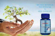 COLOSTEM Pemulihan Dan Penyembuhan Tenaga Badan Secara Semulajadi New Image, Healing