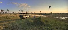 Enjoy Luxury African Safari Lodges in the Okavango Delta, a game reserve in Botswana - home to the world's best wildlife safaris and safari vacations Okavango Delta, Wildlife Safari, Game Reserve, African Safari, Africa Travel, Tent Camping, Lodges, Places To Go, Dolores Park