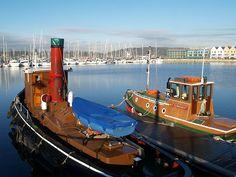 Tug boats Chatham marina [shared]