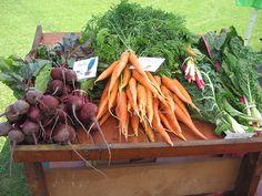 An Urban Harvest. Serving Ourselves Farm run by non-profit Friends of Boston's Homeless. Organic Farm #GivingBack