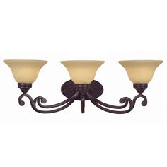 Portfolio 3-Light Oil-Rubbed Bronze Bathroom Vanity Light