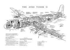 Avro 689 Tudor II cutaway drawing